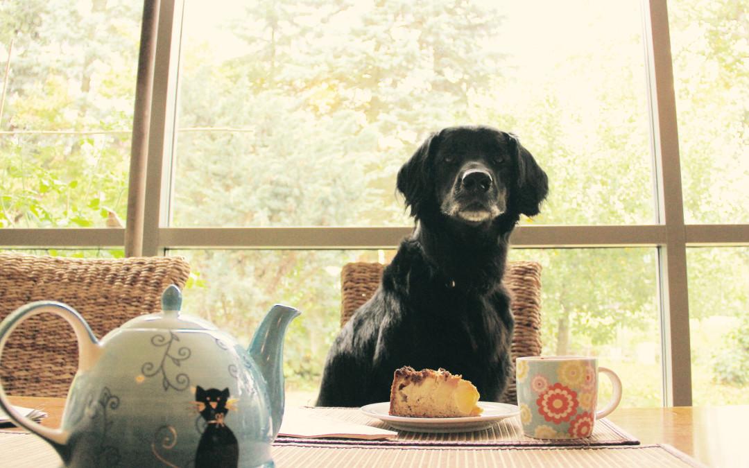 Frau Emma erzählt – in der Kuchenbäckerei