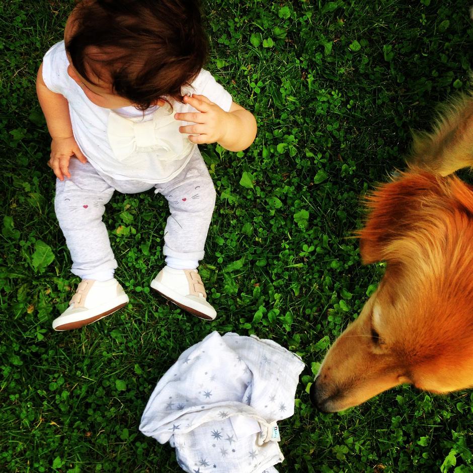 Hund und Kind - Hunde die Kinder erziehen...