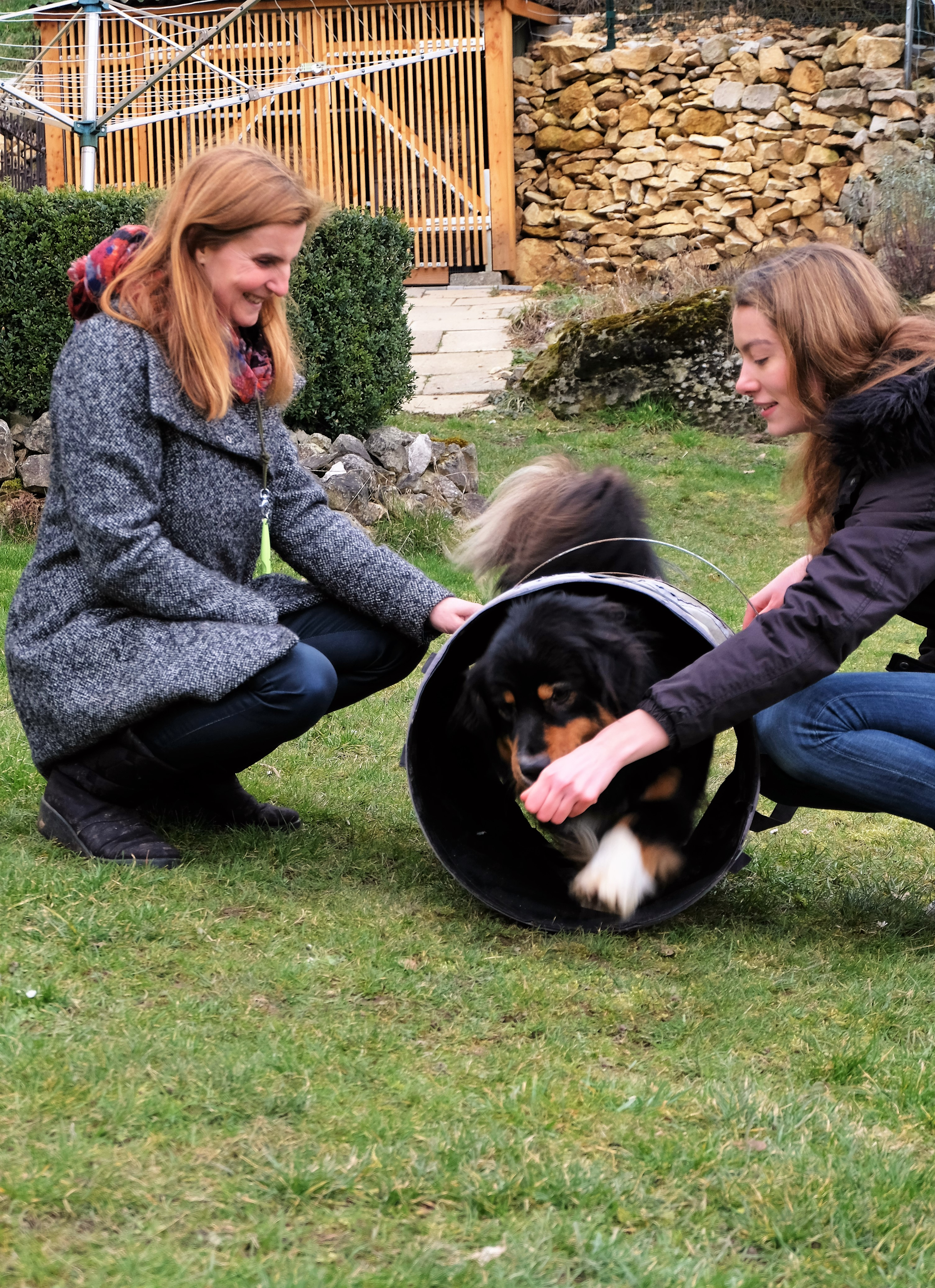 Samson - Akademie Hund Team des Monats