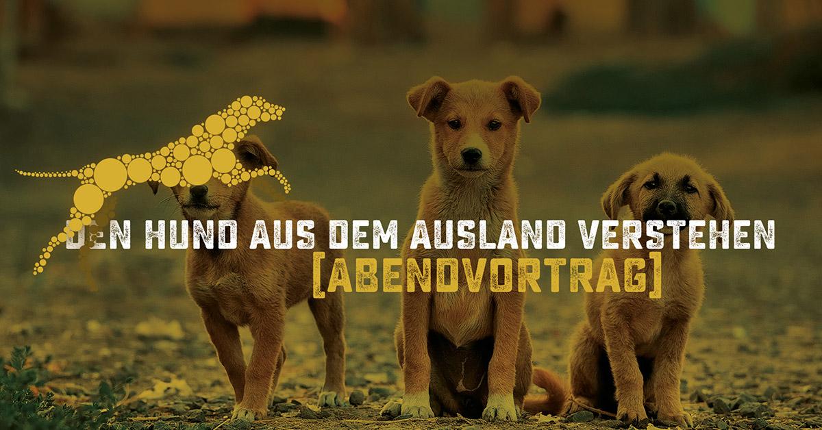 Seminar von Hundeschule Akademie Hund: Hunde aus dem Ausland verstehen