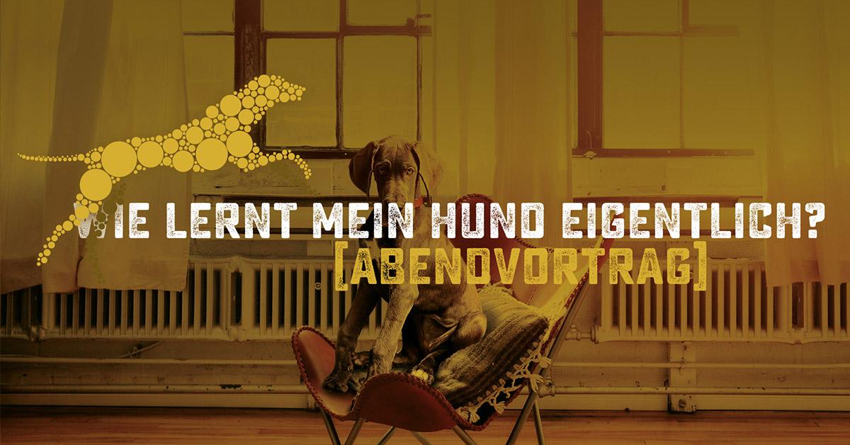Seminar von Hundeschule Akademie Hund: Lernverhalten - Wie lernt mein Hund eigentlich?