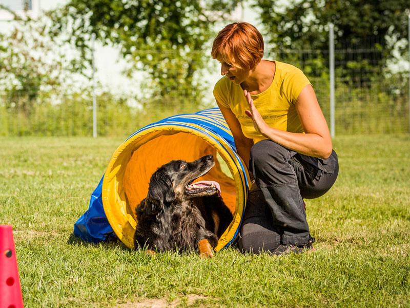 Sissy Leonie Kreid, Hundetrainerin aus Regensburg mit Hovawart Frau Emma