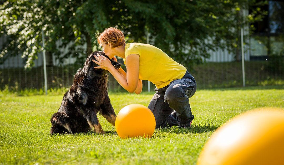 Persönlichkeit des Hundes und ihre Auswirkungen auf die Mensch-Hund-Beziehung