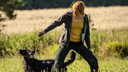 Fit Dank Hund, Sport mit Hund