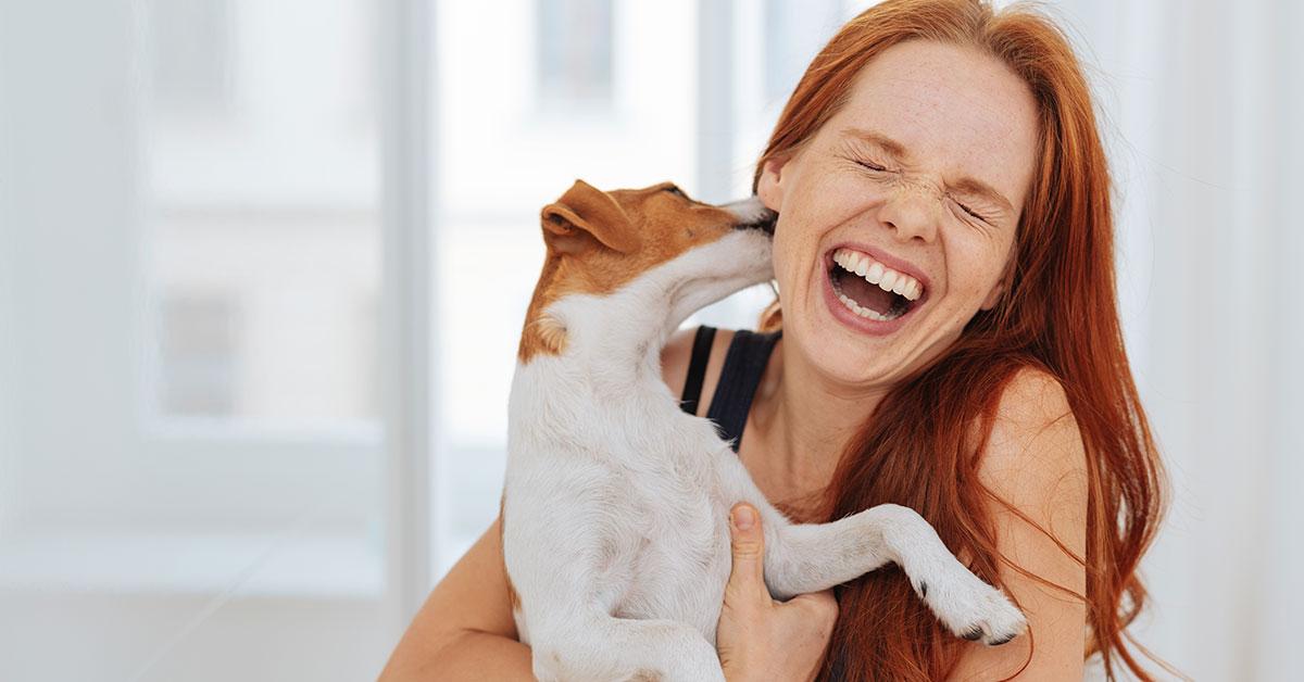 Hund schlecht Frau über s Gesicht