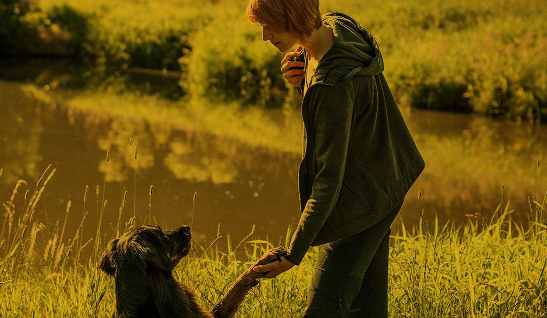 05.06.2020, Vortrag: Sprachkurs Hund – dein Grundwortschatz