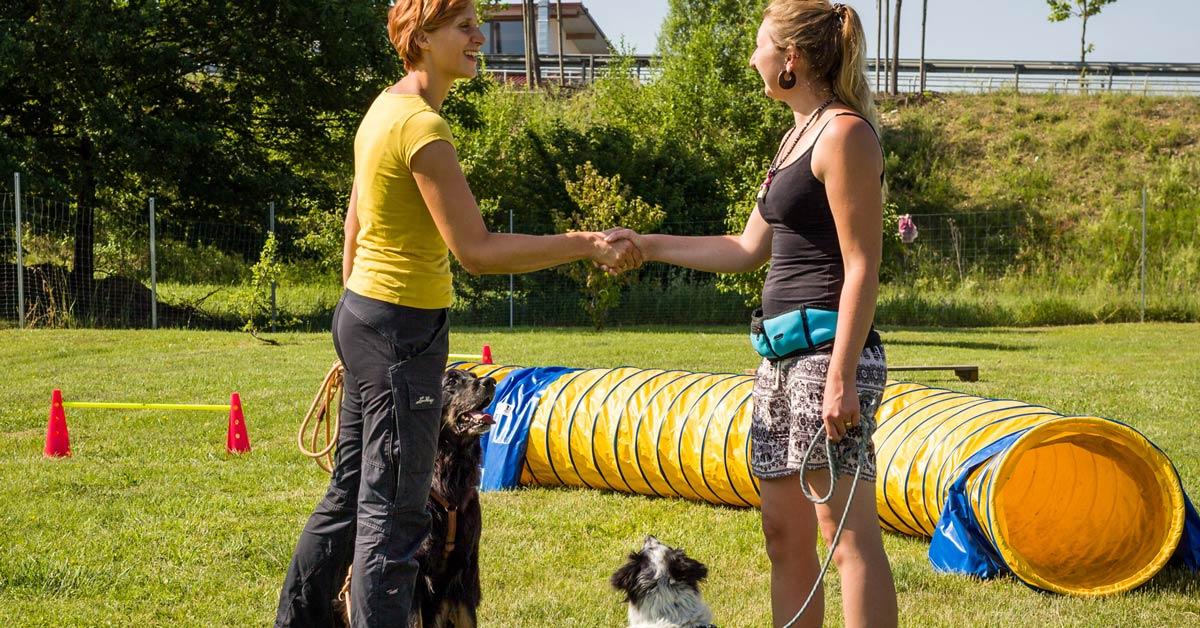 Hundetrainer: Arbeiten mit Menschen und Hunden