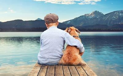 Berufswahl Hundetrainer / Hundetrainerin? – 5 Dinge die du wissen musst