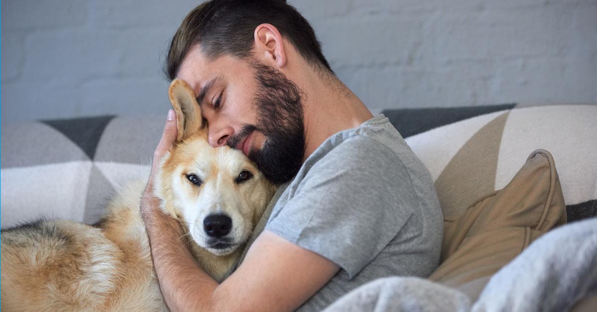 Hunde: empathische Wesen, die uns Menschen hervorragend verstehen