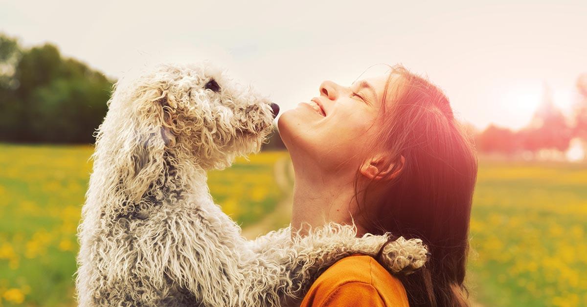 Gegenseitiges Verständnis - die Basis für gehorsame Hunde